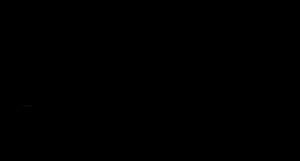 Jungle-Straws-Logo-transparent